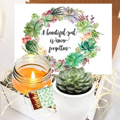 Succulent Candle Gift Box